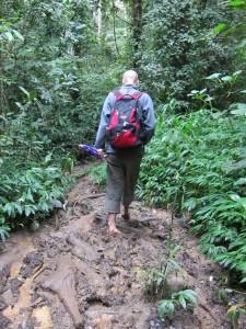 Genväg genom en lerig djungel